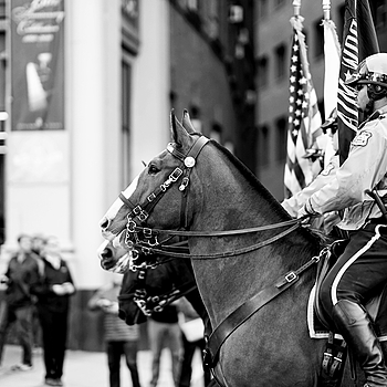 Honoring The Vets | FE 85MM F1.4 <br> Click image for more details, Click <b>X</b> on top right of image to close