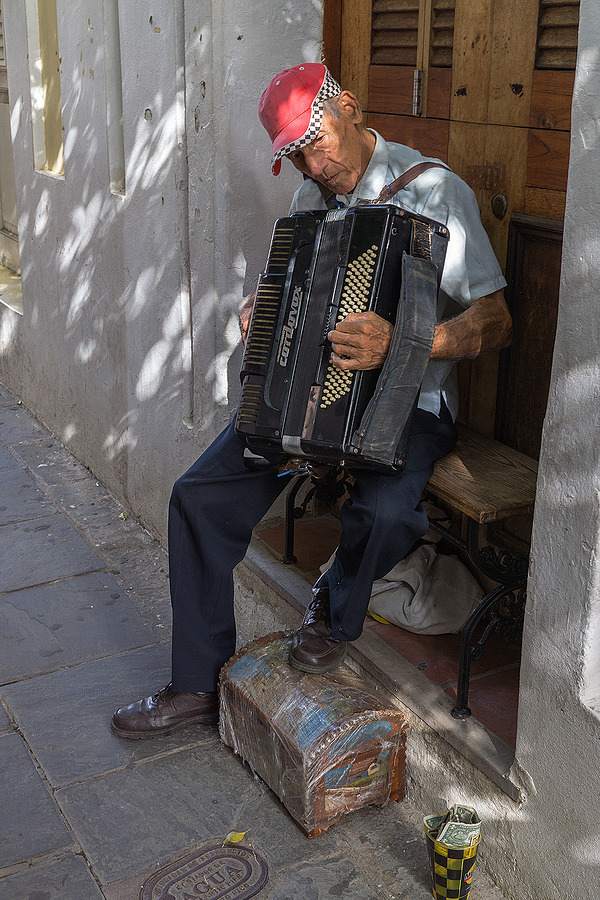Accordionist | LENS MODEL NOT SET <br> Click image for more details, Click <b>X</b> on top right of image to close