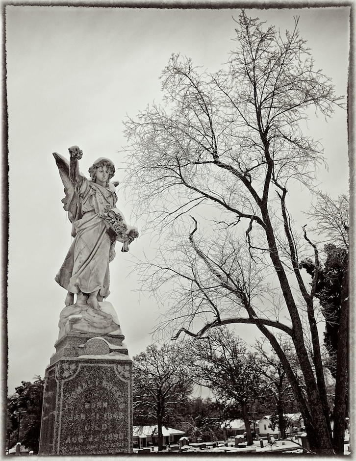 Winte - Oak Cemetery | NIKON 24 MM F/2.8 <br> Click image for more details, Click <b>X</b> on top right of image to close