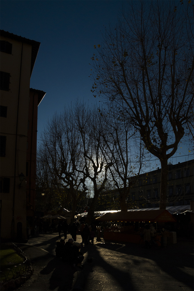 Lucca backlit | LENS MODEL NOT SET <br> Click image for more details, Click <b>X</b> on top right of image to close