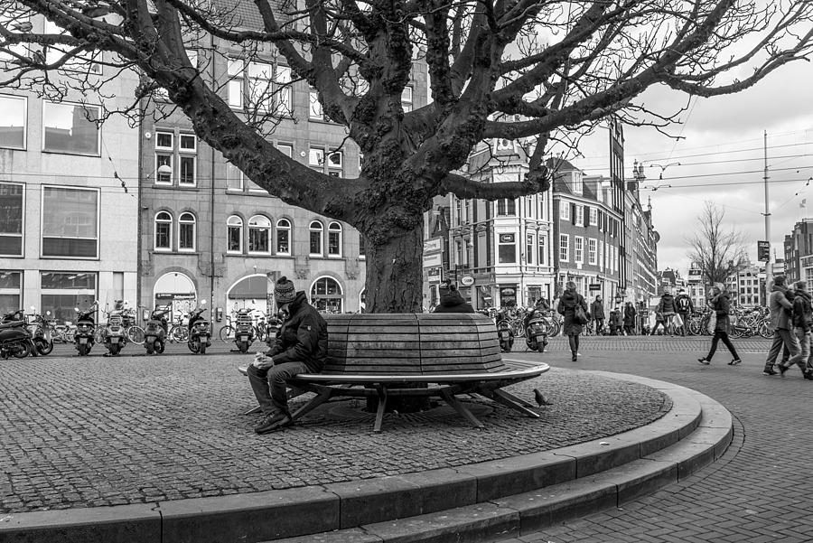 Bench near Spui | LEICA SUMMILUX 35MM F1.4 ASPH <br> Click image for more details, Click <b>X</b> on top right of image to close