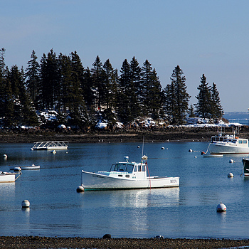 Owls Head Harbor | LENS MODEL NOT SET